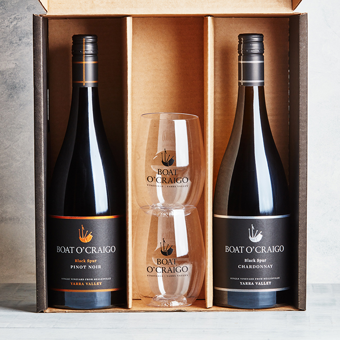 GoVino 2 bottle pack